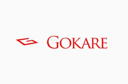 Gokare-Bronze01